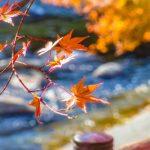 香嵐渓(こうらんけい)の紅葉(愛知県)と日帰り温泉まとめ