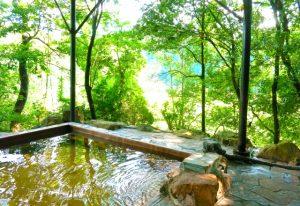 大山(鳥取県)温泉