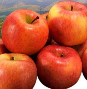 こみつりんご