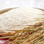 栃木県と京都府のお米のブランドは?ランクの種類や方法まとめ